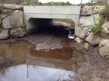 bottomless-bridge-img_6417web